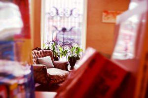 Sofa Chair Through Bookcase Window Plants